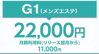 G-1(ジーワンプラン)2.5万円(税別)月額利用料(リリース翌月から)10,000円(税抜)